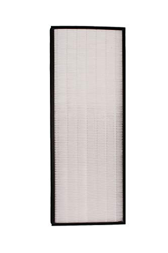 Find Discount LifeSupplyUSA Replacement True HEPA Filter Compatible with Rowenta XD6071 XD6076 fits ...