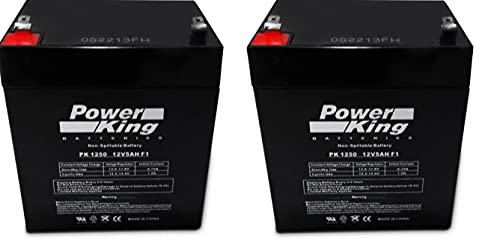 Compatible with the OEM Razor E100 E125 E150 Crazy Cart, Power Rider 360 Electric Scooter Battery 12V 5AH - 2 Pack High Performance and Rechargeable(This Will Not fit The E100 Power Core) Beiter DC Power