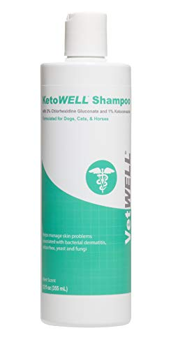 VetWELL Ketoconazole Chlorhexidine Shampoo for Dogs & Cats - Medicated Shampoo for The Treatment of Skin Infections, Growths, Abrasions, Acne, & Hot Spots Oatmeal & Aloe 12oz Mint Scent