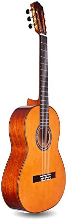 Cordoba C9 Parlor Small Body Classical Acoustic Nylon String Guitar, Luthier Series, with Polyfoam Case
