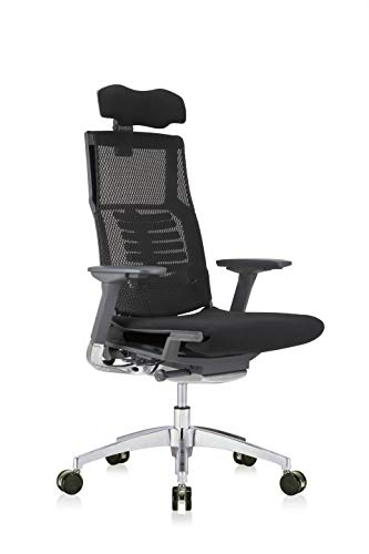 High-Back Ergonomic Executive Office Chair with Black Mesh Back, Black Fabric Seat, Charcoal Frame and Headrest by Eurotech