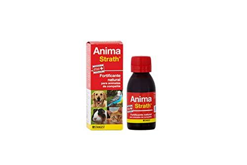 Strangest Anima-Strath Suplemento Nutricional para Animales de Compañía | Fortificante Natural | Mejora Energía y Vitalidad | Apoya Sistema Inmune | 100 ml