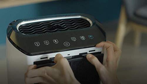 Rowenta Filtro Carbón Activo XD6060ES - Filtro recambio de carbón activo para purificador Rowenta Air Intense PU4020, filtro para partículas grandes, reduce el olor: Amazon.es: Hogar