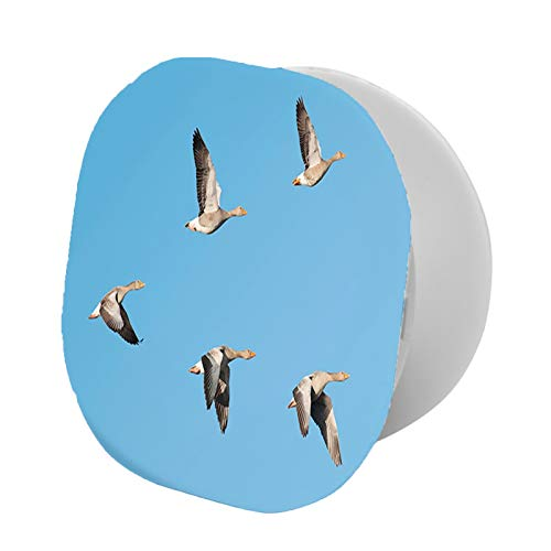 Adjustable Cell Phone Stand,Flock of Migrating Greylag Geese Birds Flying in v Formation Clear Sky Picture Print,Compatible with All phone