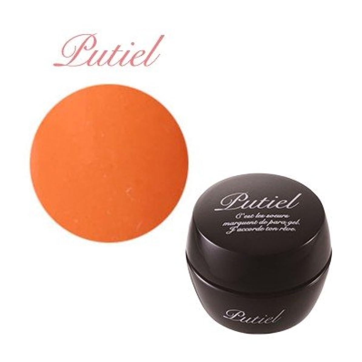 繁栄する未使用処分したプティール カラージェル 121 ブライトオレンジ 2g