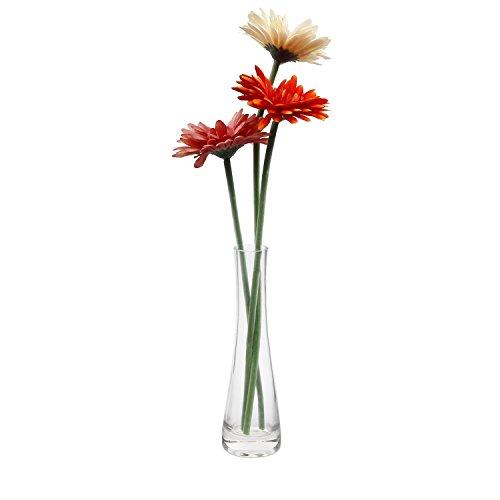 ComSaf 21.5cm 花瓶 ミニ花器 ガラス製 透明 フラワーベース 一輪挿し 水栽培 インテリア飾り プレゼント