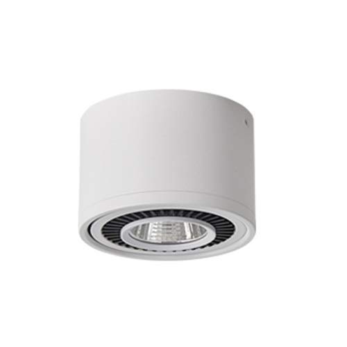 SYyshyin Foco LED montado en Superficie Lámpara de Techo Foco único Lámpara de Techo de mazorca Ajustable Lámpara de Sala de exposiciones de Invitados Pasillo Porche Fondo de Pared Foco pequeño