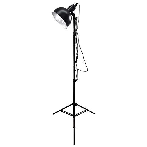 Yyqx Lámpara de Piso Sketch Sketch Lámpara de pie, retráctil, Estudiante de Arte Interior, lámpara de Pintura, Apta para Estudio Studio Tripod Ajustable Lámpara Luz de Piso