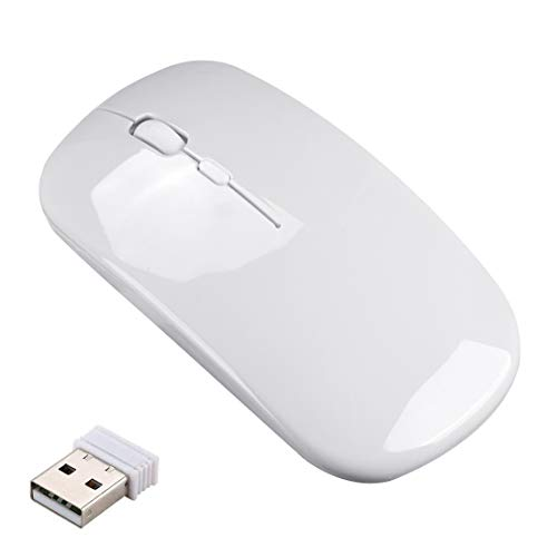 Wireless Silent Rechargeable Mouse for Laptop Computer PC,1600 DPI 3 Adjustment Levels Slim Mini Noiseless Cordless Mouse,10m Remote Range 2.4G Mice for Windows,MAC OS&Linux/Home/Office Silver