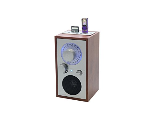 Sunstech RPR3000 - Radio multifunción de Madera, Color marrón