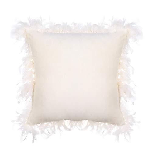 Kissenbezüge aus Samt, dekorativ, bequem, quadratisch, mit Federrand, für Wohnzimmer, Sofa, Stuhl, Couch, 45 x 45 cm