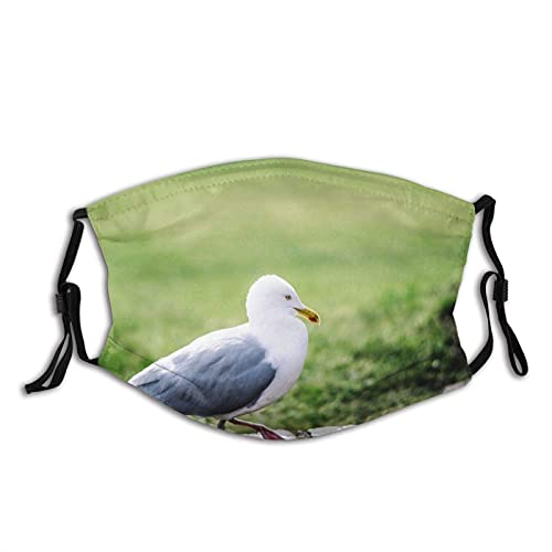 Máscara facial de moda cómoda Gaviota patas de aves plumas a prueba de sol moda Bandana Headwear para la pesca