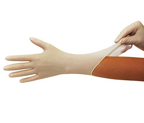 Latexhandschuhe 100 Stück Box (M, Weiß) Einweghandschuhe, Einmalhandschuhe, Untersuchungshandschuhe, Latex Handschuhe, puderfrei, unsteril, disposi...