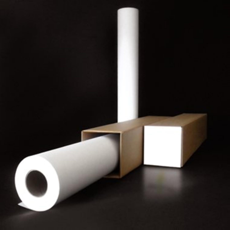 Großformatkopierpapier 84,1 cm x 175 175 175 m (B x H), ungestrichen, 80 g qm, weiß B0091SWZE6 | Elegant  2cb5a8