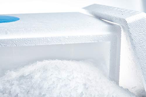 Trockeneis 30kg Pellets | in praktischer Thermobox | ideal zum Kühlen und für Nebeleffekte | inkl. Express Versand nur bei Trockeneis.shop