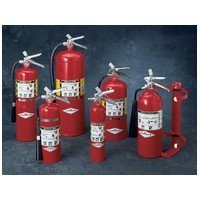 Amerex B417T,Multi-Purpose Fire Extinguisher for Class A with 2.5 lb Stored Pressure ABC Dry Chemical 1A 10B C B and C Fires with Anodized Aluminum Valve Vehicle Bracket and Nozzle