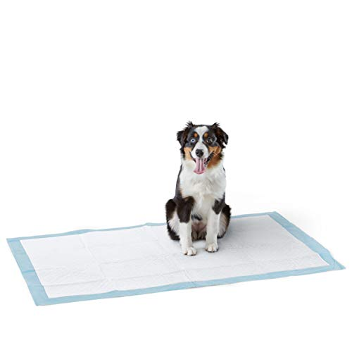 Amazon Basics Dog and Puppy Potty Training Pads, Heavy Duty Absorbency, Giant (27.5 x 44 Inches) - Pack of 30