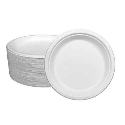 Ecorigin Platos Desechables de Papel de caña de azúcar. Pack de 100 Unidades y 22 cm. Platos Desechables biodegradables y compostables. Alternativa al plástico.