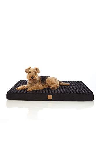 Pets&Partner Hundebett | Hundekissen | Oeko-TEX Zertifiziert | orthopädisch für mittel große und große Hunde L Schwarz
