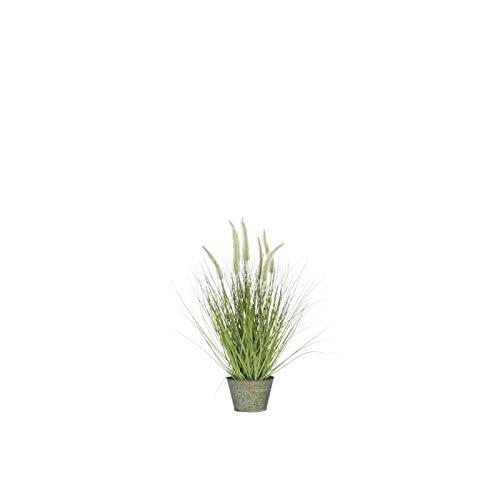 J-line Herbes + GRAMINEES en Pot Metal S