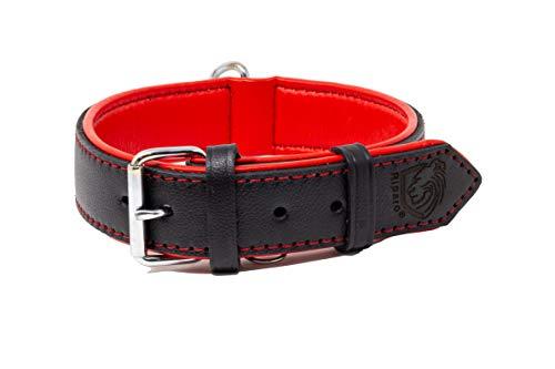 Riparo Echtes Leder Verstellbares K-9 Hundehalsband mit Zusätzlicher Verstärkung (L: 3,8CM Breit für 45,7CM - 53,3CM Hals, Schwarz-roter Faden)