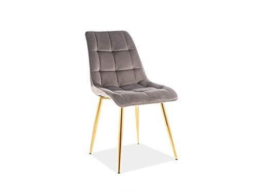 Luenra Esszimmerstuhl, 87 × 41 × 47 cm, Kombination aus gepolstertem Tablett aus Samt und goldfarbenen Metallbeinen, Farbe: Grau