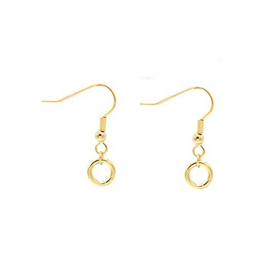 Musthaves Dames Oorbellen Open Cirkels Earrings Circles RVS 2,5x1 cm Goudkleurig