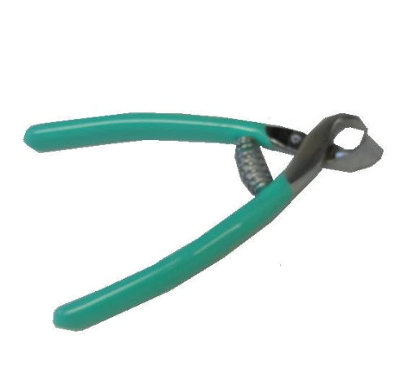 アミューズジャンル捨てるフルサワの介護用爪切り 斜刃 グリーン