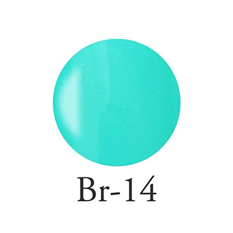 メイトセラフ体系的にエンジェル クィーンカラージェル フェリシテブルー Br-14 3g