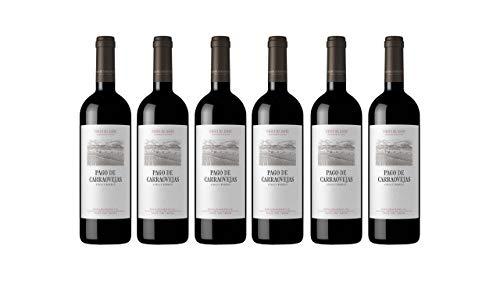 Vino tinto Pago de Carraovejas - D.O. Ribera del Duero - Caja 6 botellas x 75cl