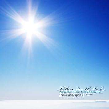 파란 하늘의 햇살