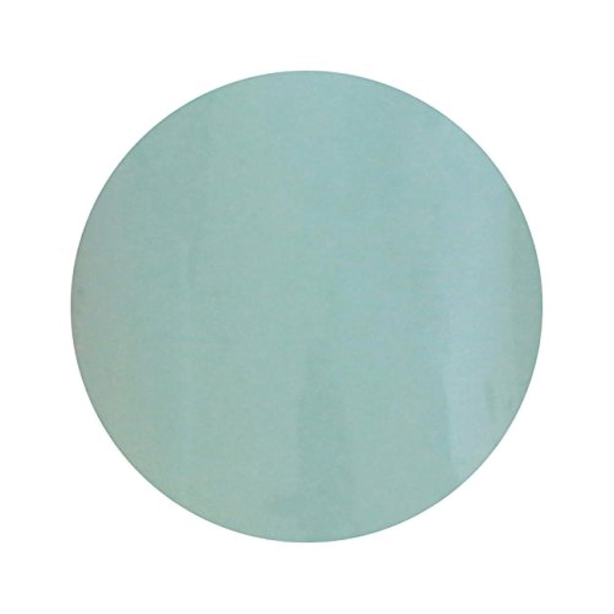ヘビ掻くりT-GEL COLLECTION ティージェル カラージェル D210 ペールブルー 4ml