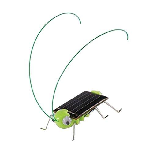 TOYMYTOY Solar Insekten Spielzeug für Kinder Heuschrecke Spielzeug