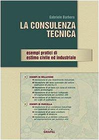 La consulenza tecnica. Esempi pratici di estimo civile ed industriale