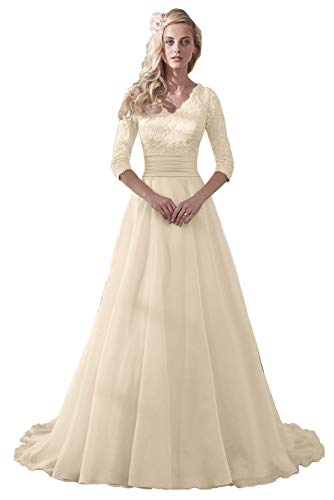 Plus Size 20 Champagne Women's Modest Lace Sleeves Wedding Dresses Long for Bride V Neck Organza Floral Bridal Gowns (Apparel)