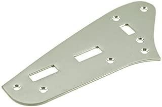 control plate jaguar