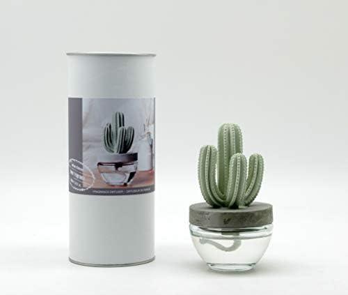 Top 10 Best cactus essential oil diffuser Reviews