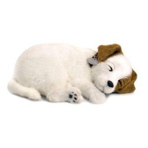 Perfect Petzzz 65409–Plüsch Interactive–Hunde–Jack Russel–Tier, die atmet für wahr–25cm