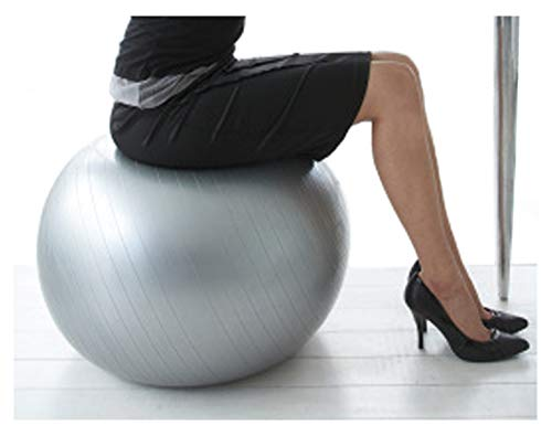 CalCore Professional Strength Swiss Ball for Office, Exercise, Stability and Fitness