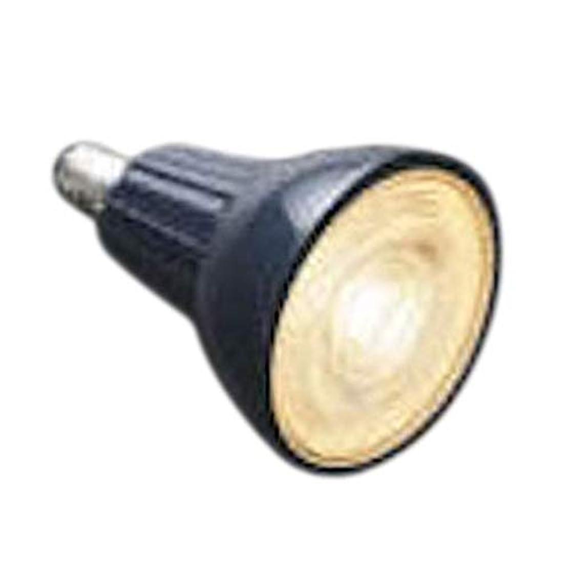粒不定住所コイズミ照明 LED電球 AE49739L 本体: 奥行6.6cm 本体: 高さ5cm 本体: 幅5cm
