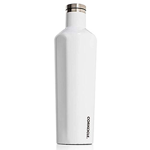 Top 10 corksicle water bottles 16 oz for 2021