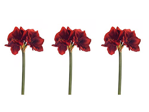 Floral Kingdom Real Touch 30' XLarge Artificial Amaryllis Flowers for vase Arrangements, Home/Office Decor (Pack of 3) (Red)
