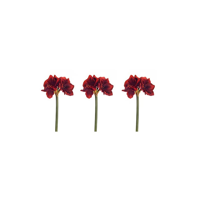 silk flower arrangements floral kingdom real touch 30' xlarge artificial amaryllis flowers for vase arrangements, home/office decor (pack of 3) (red)