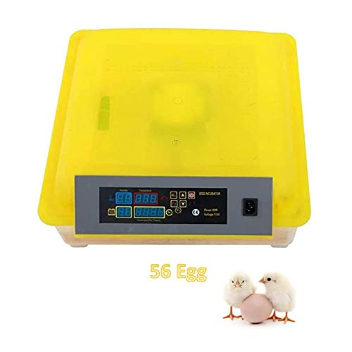 FHISD Incubadora de Huevos 56 Incubadora Digital Totalmente automática con Giro de Huevos para Pollos, Patos, Ganso, Aves, codorniz, incubadora, Pavo Real, Aves de Corral, Inte