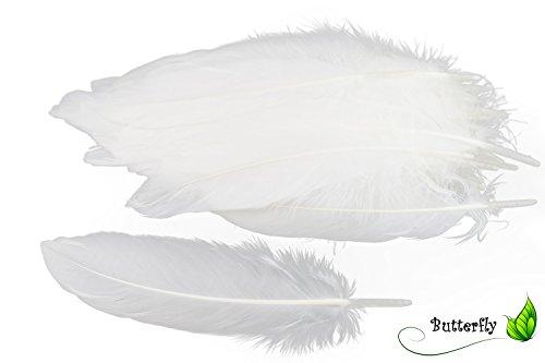 Creativery 50 Gänsefedern 17cm - 20cm (weiß 029) // Dekofedern Bastelfedern Vogelfedern Gänse Federn Deko