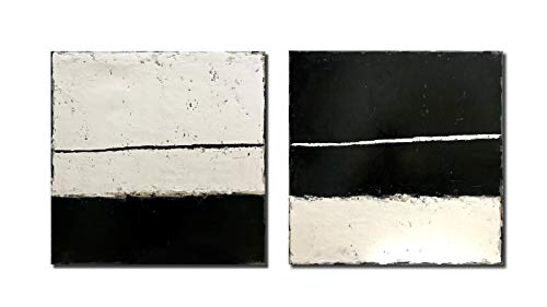 Diathou 2 Pieces of Abstract Wall Art 20x20in x2 100% Hand-Painted Black and White