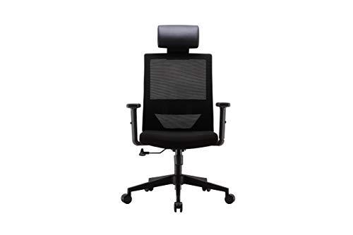 SIHOO Ergonomics Office Computer Desk Chair, Adjustable Headrests Chair Backrest and Armrest's Mesh Chair (Black)