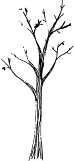 A7 'Bare Tree' Unmounted Rubber Stamp (RS00010913)