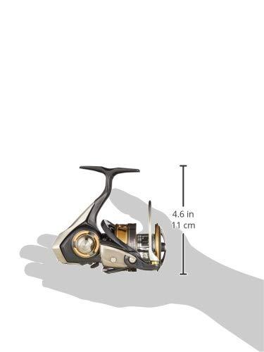 ダイワ(DAIWA)スピニングリールレガリスLT4000D-CXH