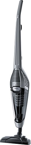 Electrolux EENL51TG UltraEnergica Aspirapolvere Senza Sacco, 750 W, 1.5 Litri, Acciaio, Grigio Tungsteno